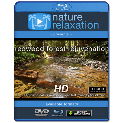 video hd 1080p full nature hd