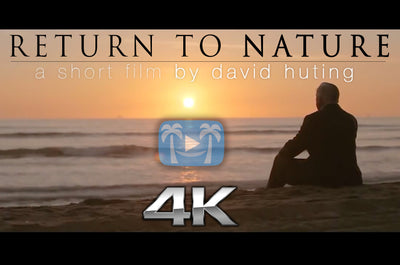 """Return to Nature"" 4K Short Instrumental Film & Message Video"