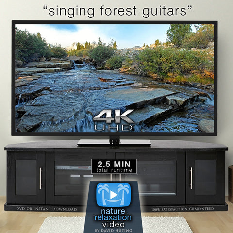 """Singing Forest Guitars"" Sierra Creeks 2 Miin Relaxing 4K Music Video 432HZ"