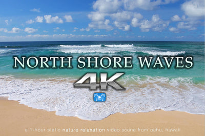 """North Shore Waves"" Oahu 1 Hour 4K Static Nature Video"