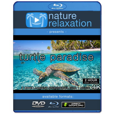 """Turtle Paradise"" 2-Hour Undersea Nature Film + Music 4K"
