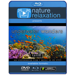 """Underwater Wonders"" 2 or 9 HR Underwater Film + Music in 4K UHD"