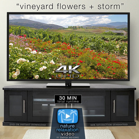 """Vineyard Flowers + Storm"" 4K Static Real-Time Relaxation Video"