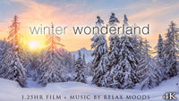 """Winter Wonderland"" 75 Min or 9 Hour Aerial Nature Film in 4K UHD"
