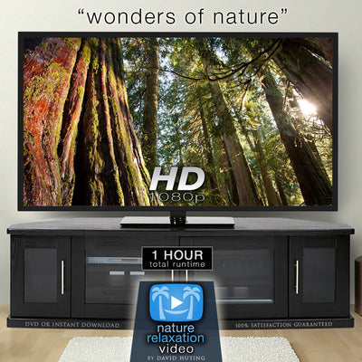 """Wonders of Nature"" 1 HR Dynamic Nature Relaxation Video 1080p"