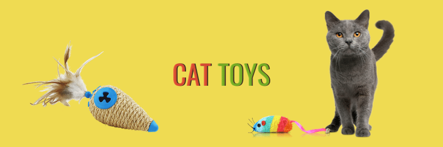Cat toys for kittens and cats
