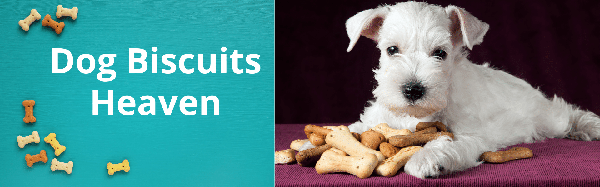 Dog Biscuits for Dogs and Puppies