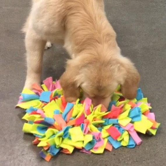Dog Snuffle Puzzle Mat Toy + Feeding Mat 2in1 - Poochles