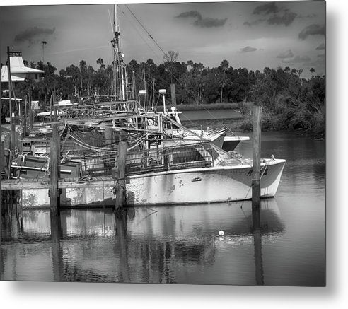 Shrimp Landing - Metal Print
