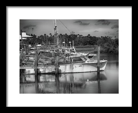 Shrimp Landing - Framed Print