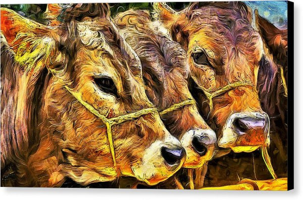 Three Calves - Canvas Print