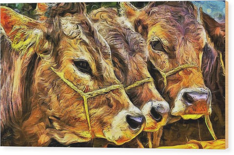 Three Calves - Wood Print