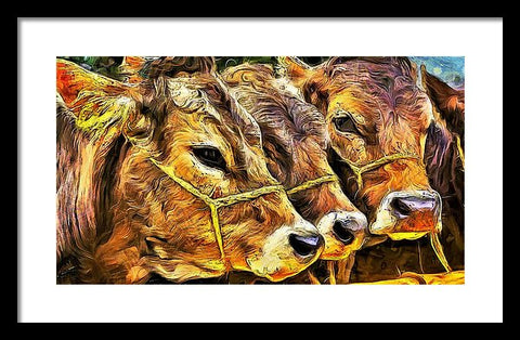 Three Calves - Framed Print