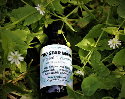 The Star Weed