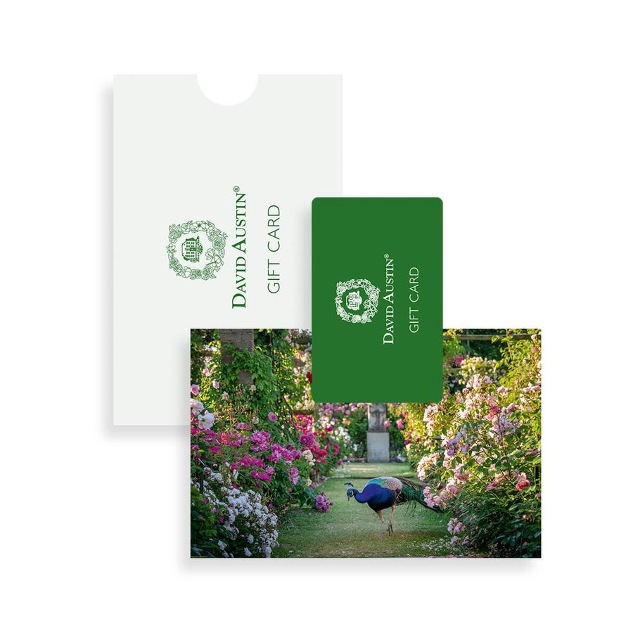 Gift Card, The Long Garden