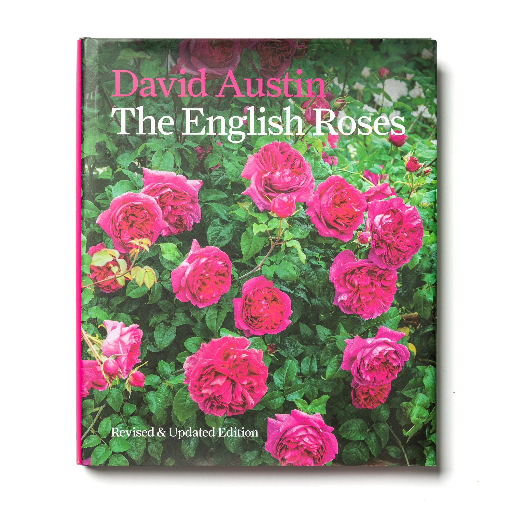 The English Roses by David Austin
