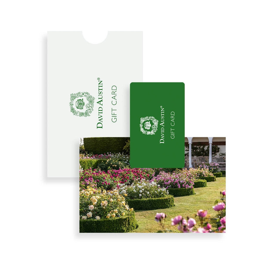 Gift Card, The Renaissance Garden