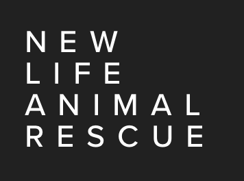 New Life Animal Rescue in New Jersey