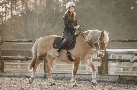 haflinger riding bareback in halter
