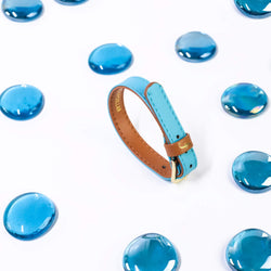 Extra Bracelet for The Classic Pup - Azure