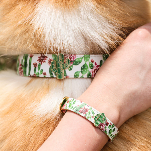 Dog or Cat Collar with Matching Friendship Bracelet