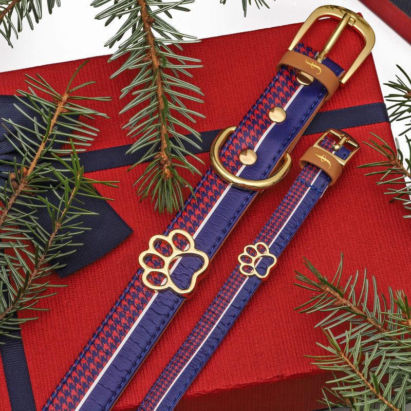 The Preppy Pup - Leash