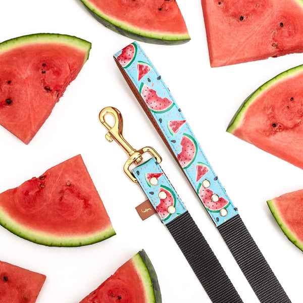 Watermelon Smiles Pup Leash