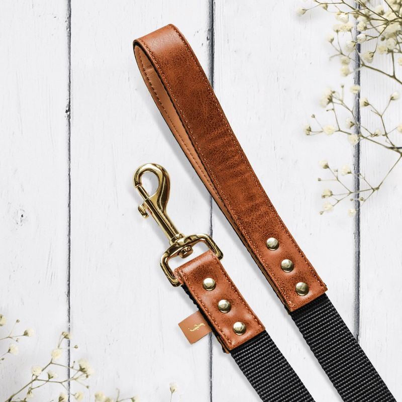 The Classic Pup: Cognac- Leash