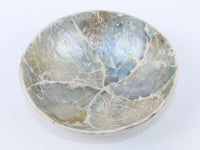 Resin and sea shell Bowl