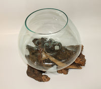 Glass Bowl on driftwood