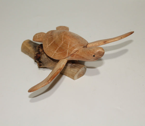 Turtle On Parasite Wood
