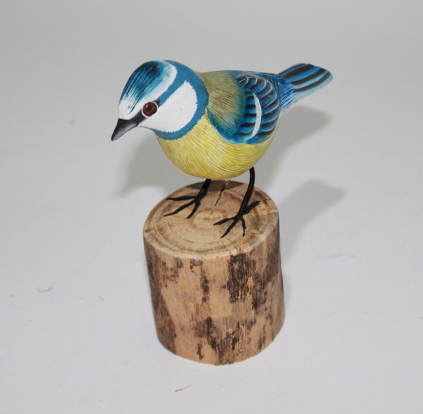 Bird Bluetit