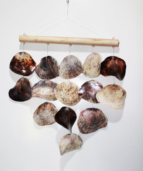 Hanging Shell Natural Line (Polished)