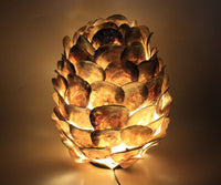 Standing Lamp Made From Shells