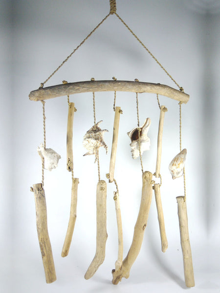 Hanging driftwood with shell