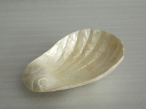 Bowl from Shell