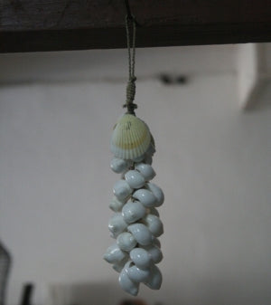 Hanging Sea Shell Decoration Klonong