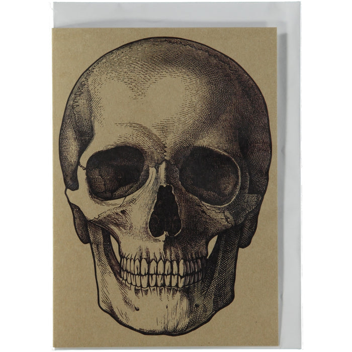 Acme Card Co Vintage Skull Illustration Kraft Greeting Card