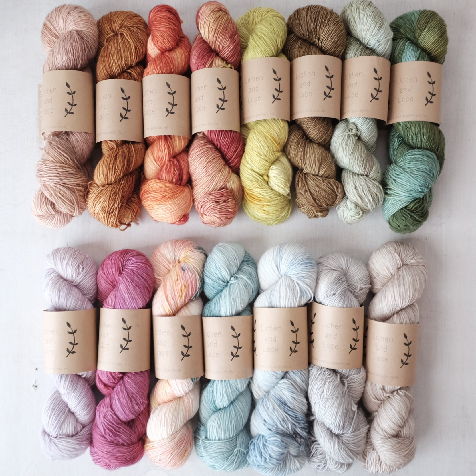 Lichen and Lace superwash fingering - SALE - 25% off