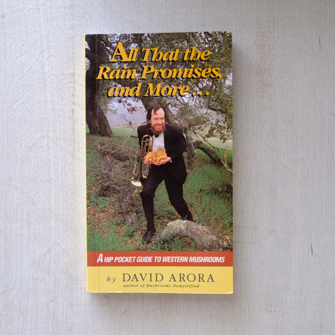 All That The Rain Promises and More... by David Arora