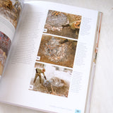 The Organic Artist: Make Your Own Paint, Paper, Pigments, Prints and More from Nature by Nick Neddo