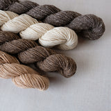 AVFKW - Dawn - New Colors!