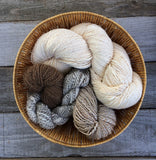 Spinning Circle - Saturday, November 16th + More Dates!