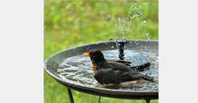 Load image into Gallery viewer, Solar Powered Fountain Pump - Kikiboom Online Store