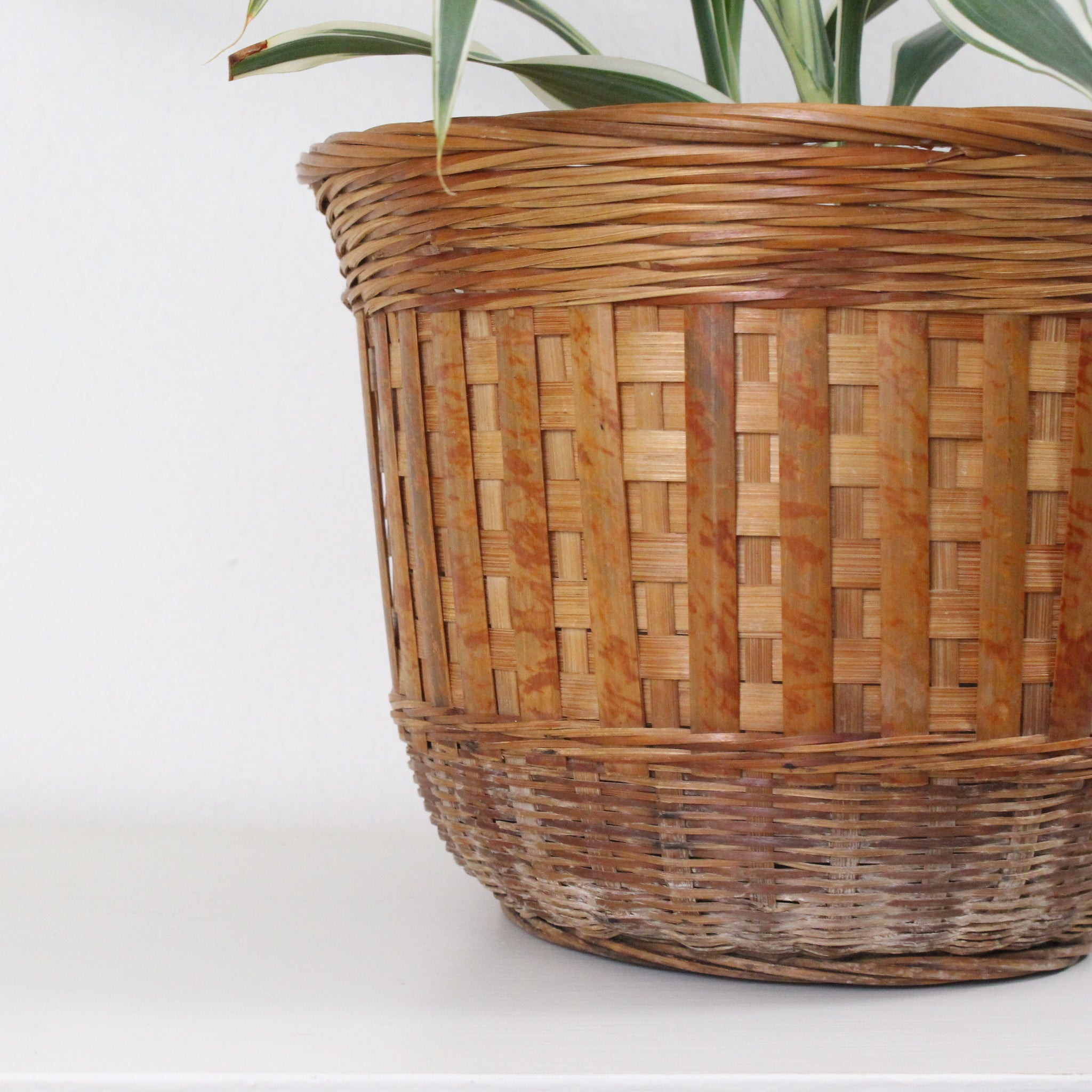 Light Woven Planter Basket