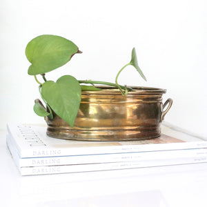 Brass Oval Planter
