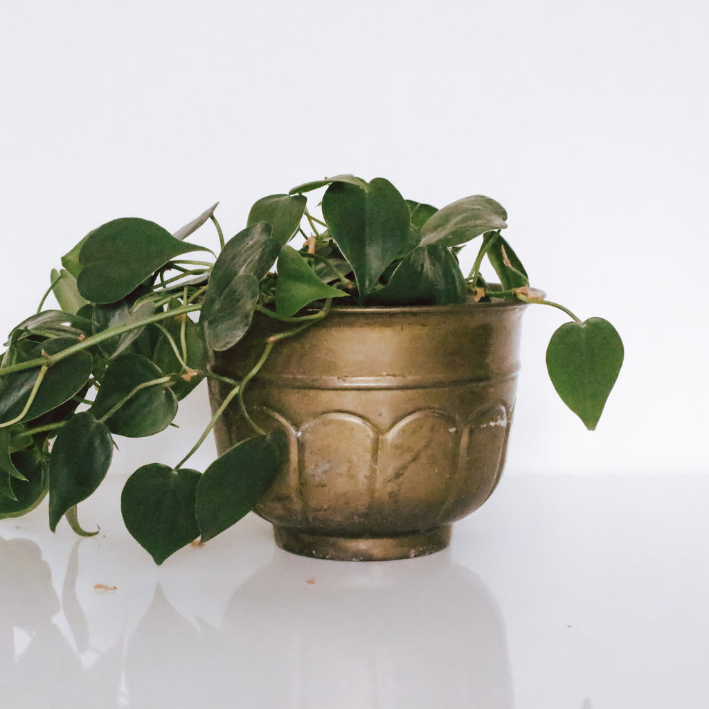 Brass Round Art Deco Planter