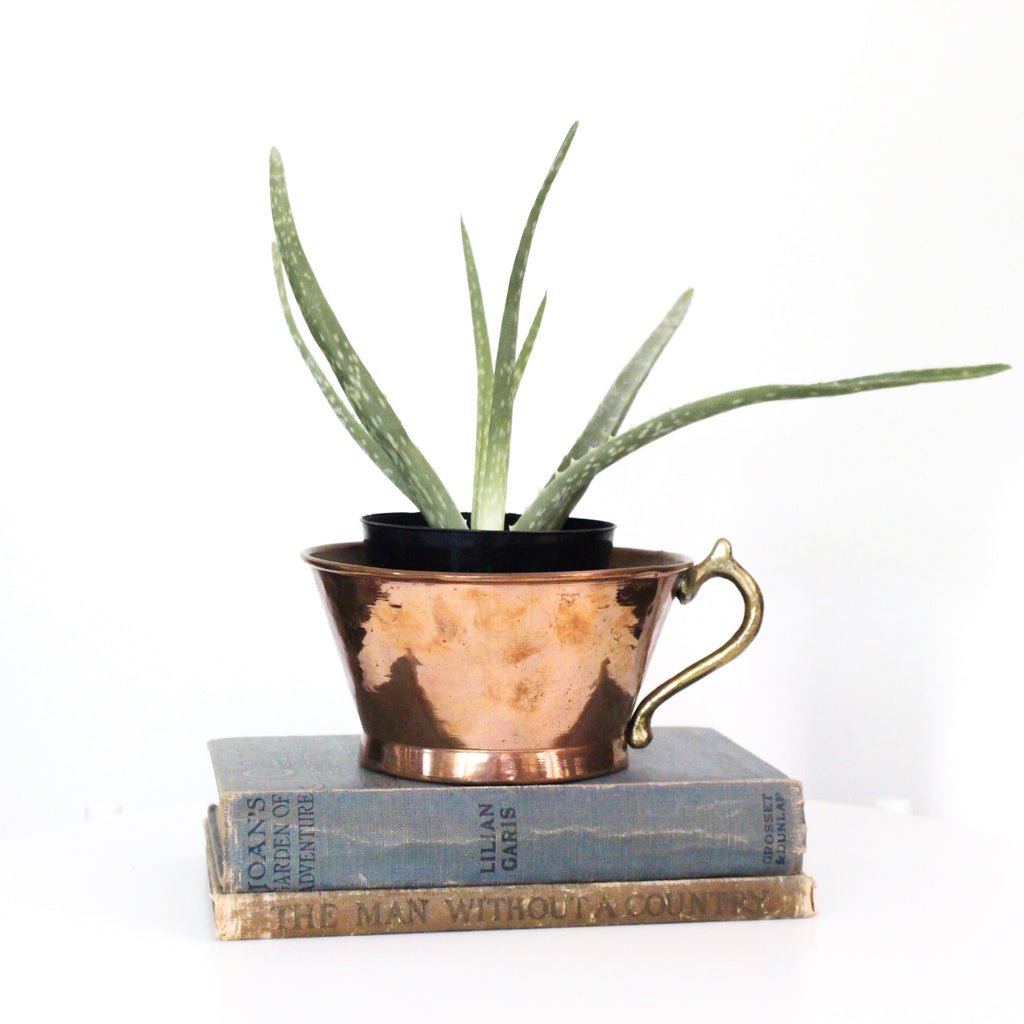 Vintage Copper Mug Planter