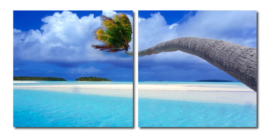 Wholesale interiors Windswept Palm Mounted Photography Print Diptych VC-2073AB