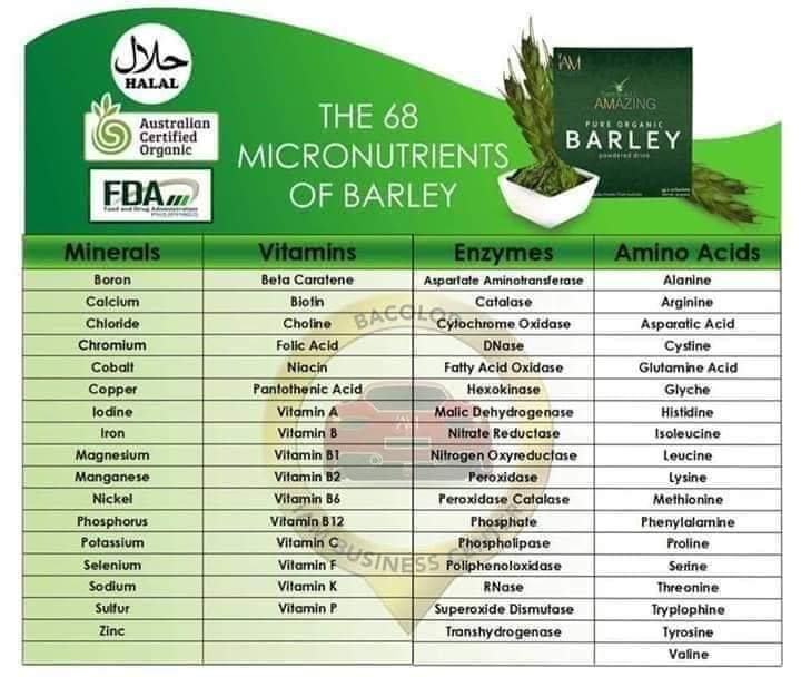 Barley nutrition